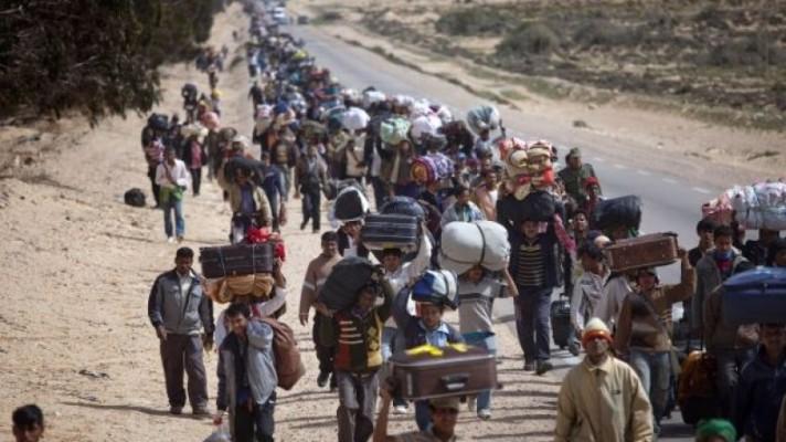 refugiados-796x448